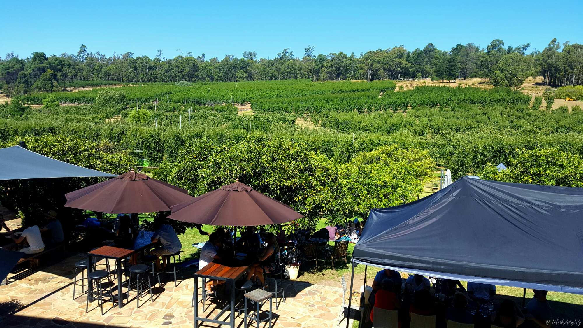 Sunday Afternoon At Core Cider House | Perth Hills