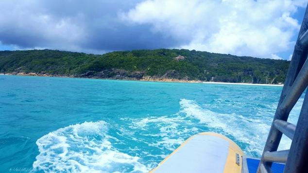 Travel, blogger, queensland, australia, lifestyle by lily, lisa carolan, whitsundays, airlie beach, noosa, snorkelling